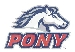 PONY Logo