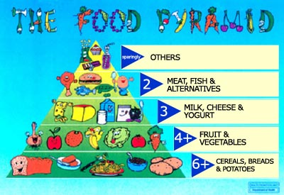 Food Pyramid Children