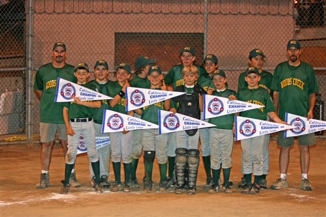 2008 LL CHAMPION