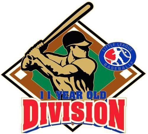 1011 Division Pin