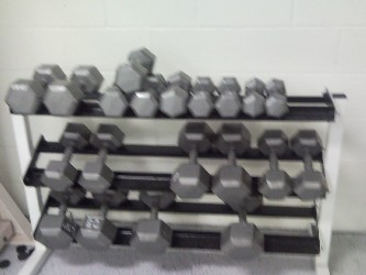 BFSC Dumbell rack