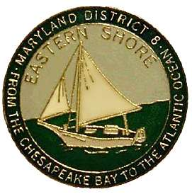 District 8 Pin Logo