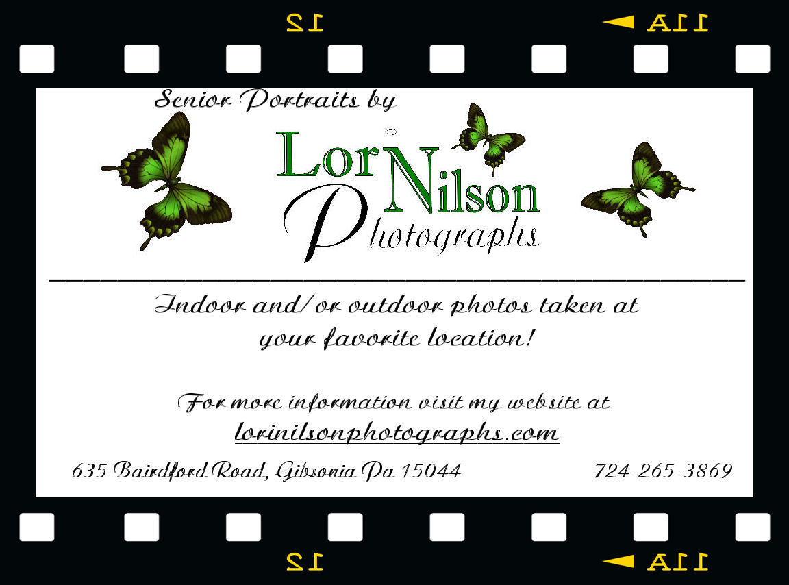 Lori Nilson Photography