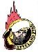 Cleveland Fire Hockey Logo