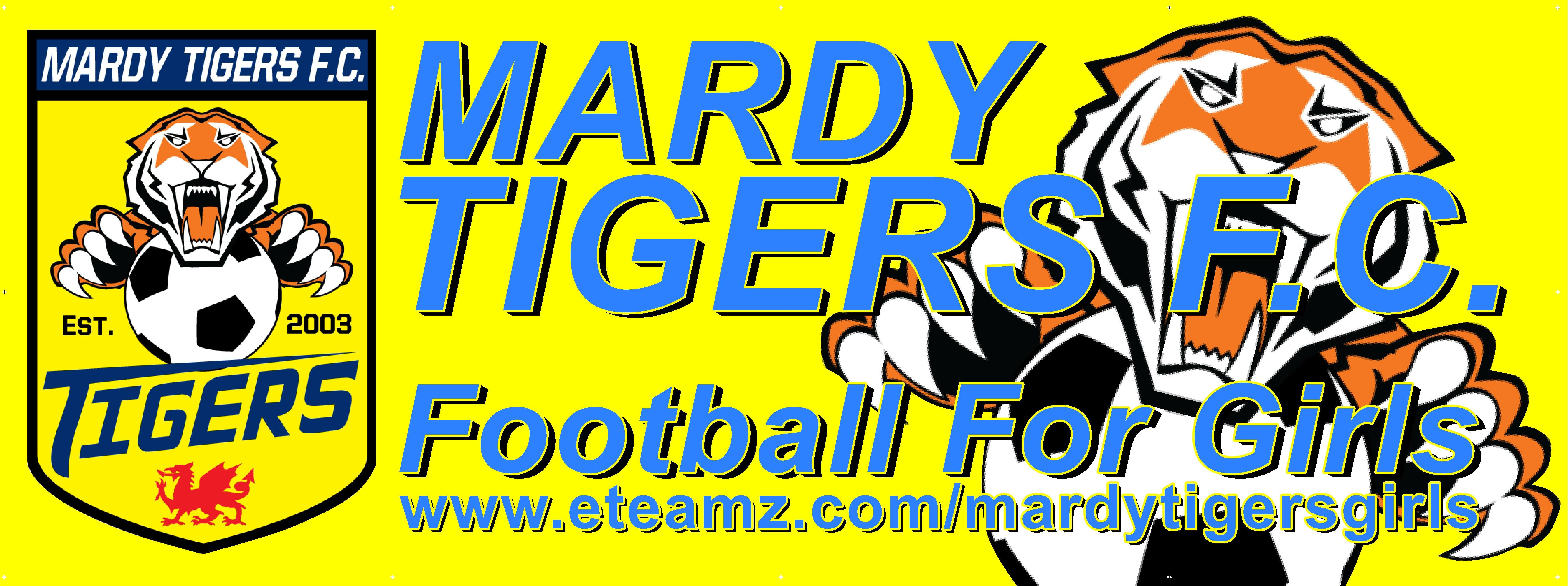 Mardy Tigers F.C.
