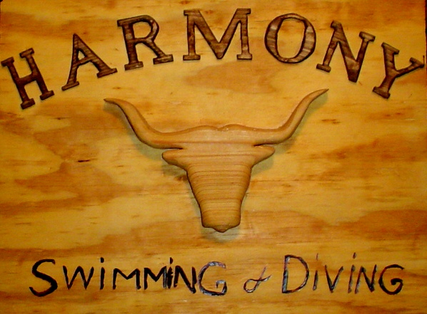 Harmony Swimming and Diving