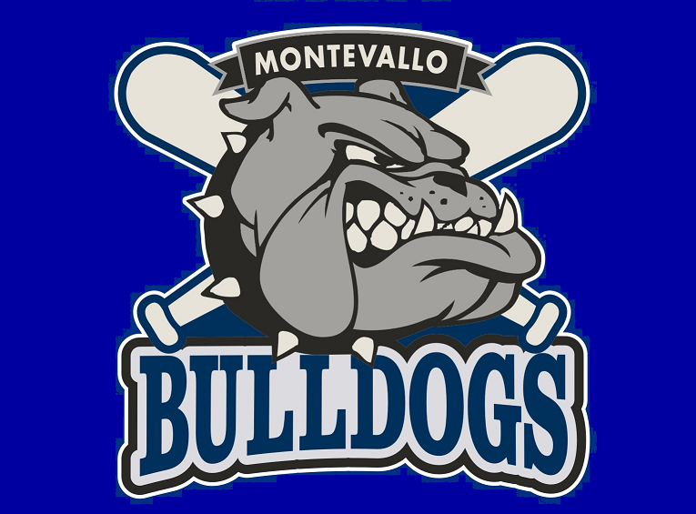 Montevallo Youth Athletic Association