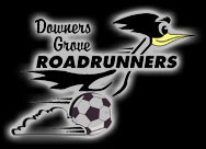 Downers Grove Rattlesnakes