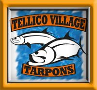 TVST Logo