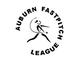 Auburn Fastpitch Logo