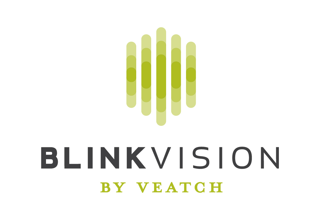Blink Logo with text.jpg