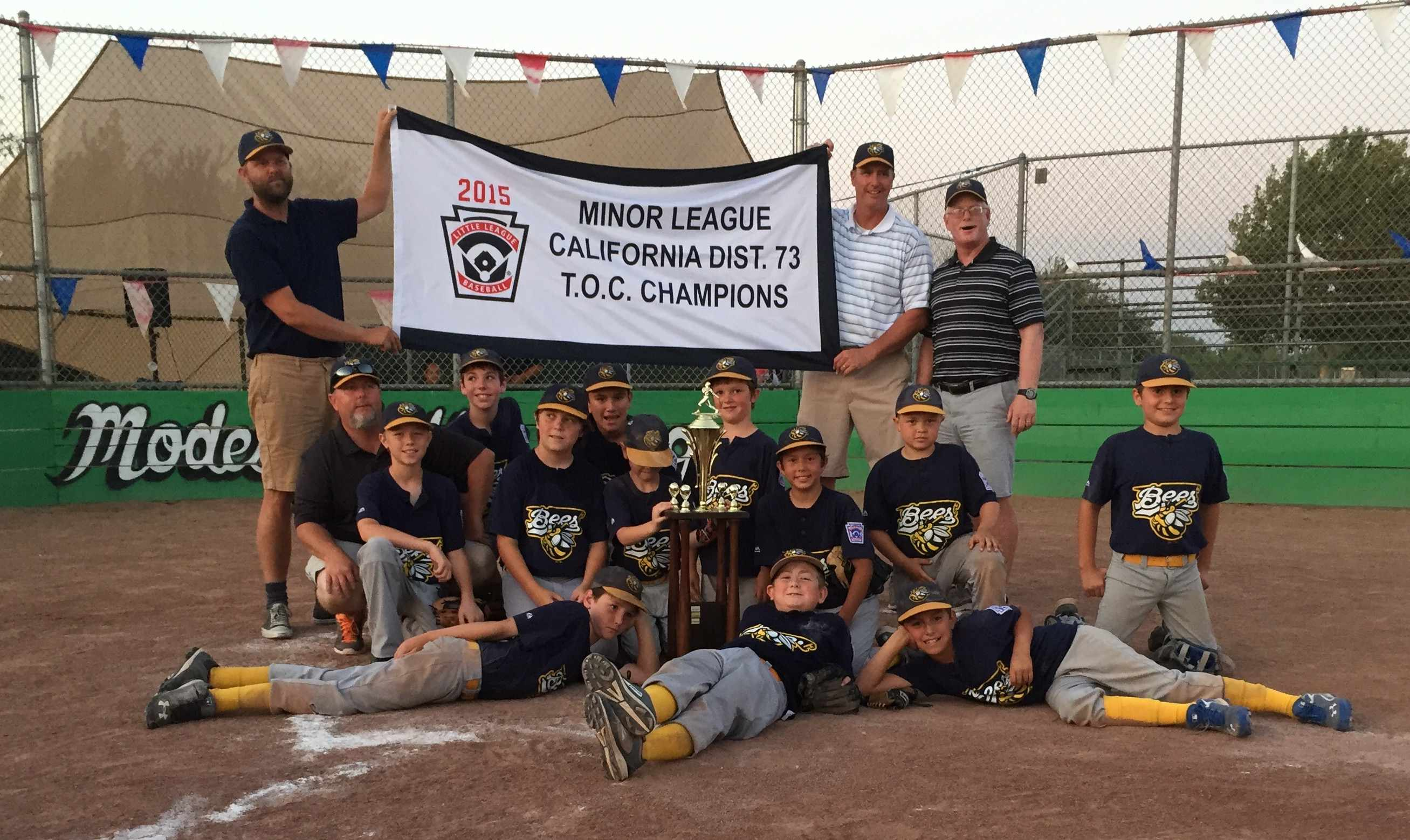 2015 District 73 Minor League TOC Champions Turlock American Bees
