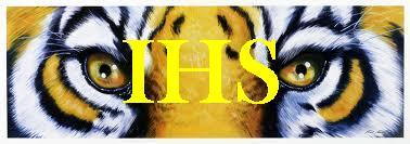 IHS Tiger Eyes