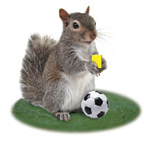 Soccersquirrel