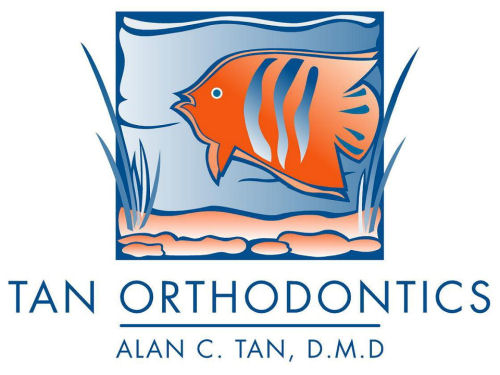Tan Ortho.jpg