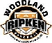 Small Woodland Ripken