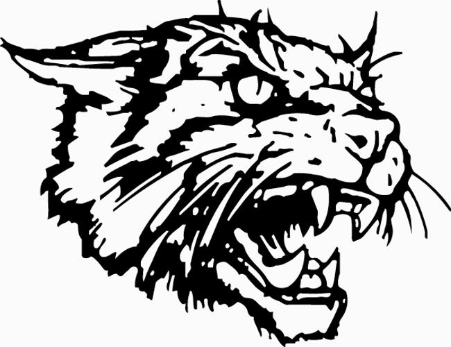Clear Creek Wildcat Men's Soccer
