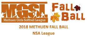 NSA FALL BALL LOGO.jpg