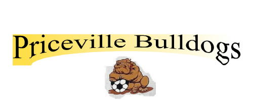 Priceville School Soccer