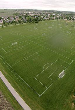 fields-half.jpg