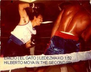 EL GATO 1985