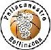 Pall Bellinzona Logo