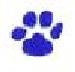 blue paw