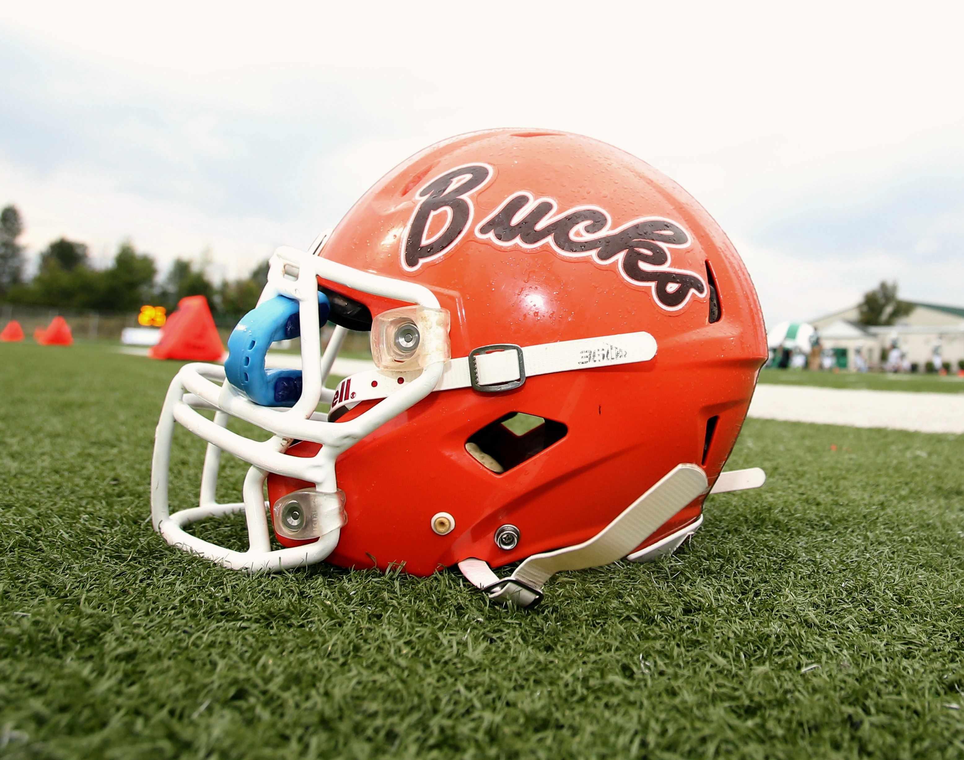 2015 Bucks Helmet On Field