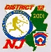 2001 District Pin