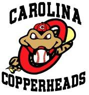 Carolina Copperheads 12U