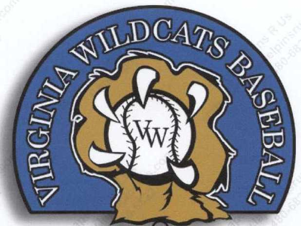 Virginia Wildcats 14U Baseball
