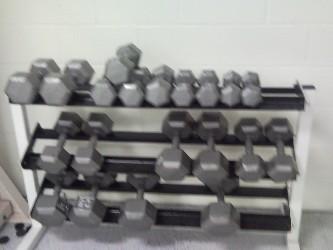 BFSC Dumbell rack