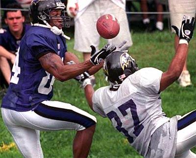 AJ in Action Raven