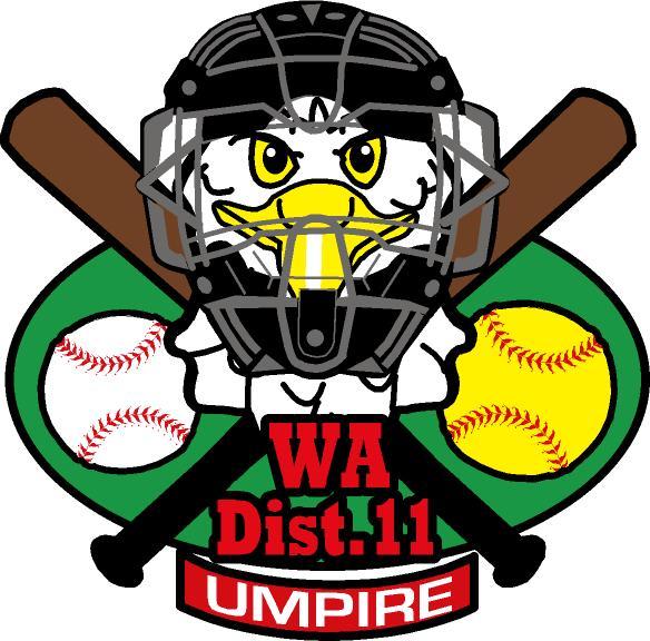 D11 umpire logo