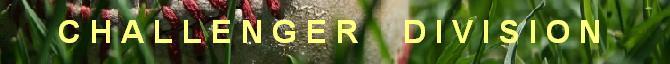GRASS BANNER CHALLENGER