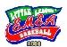 2008 EMEA logo