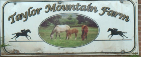 Taylor Mountain Farm