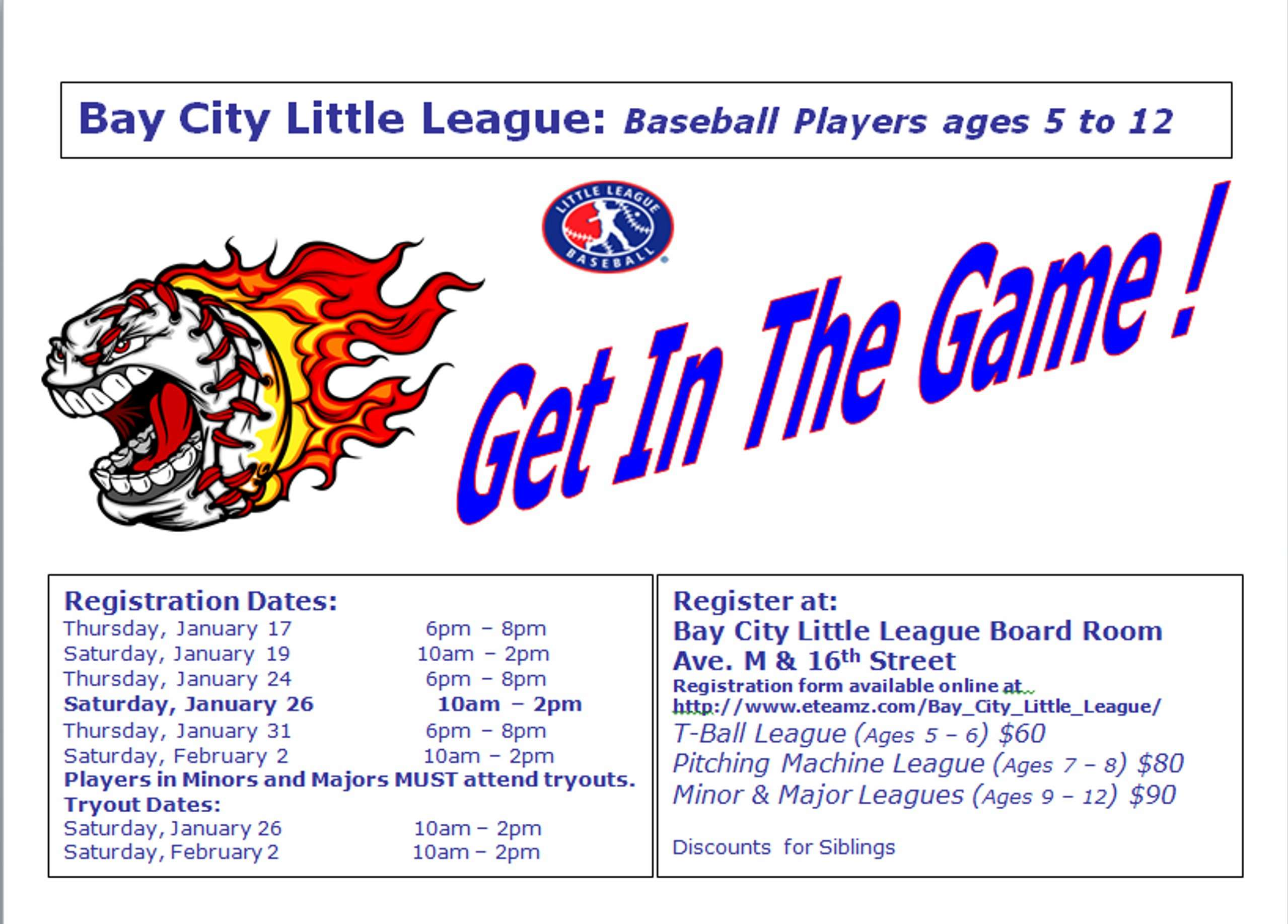 2013 BCLL Flyer