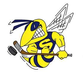 Hockey Hornet