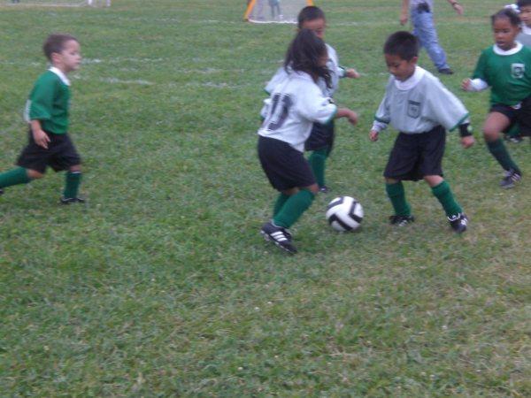 MYSC U6 rec soccer