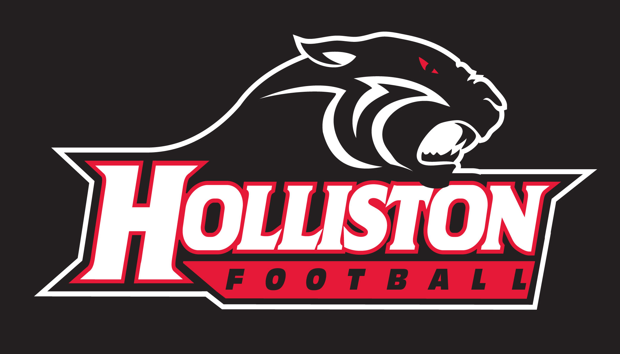 Holliston Panthers