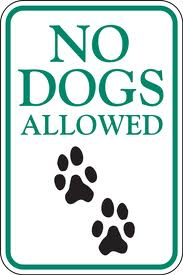No Dogs Allowed on Property
