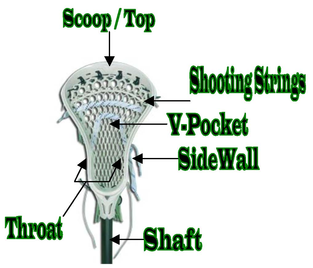 lacrosse stick terminology rh levittowntomahawks com Lacrosse Stick Labeled Boys Lacrosse Sticks