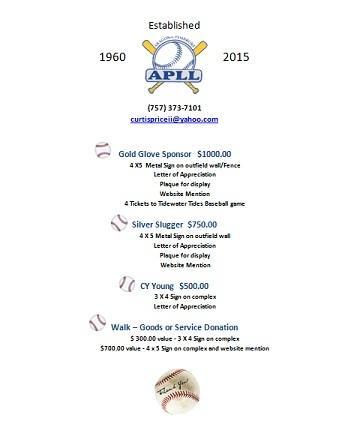 2015 Sponsorship Flyer