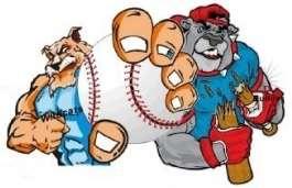 Bulldog Wildcats Logo