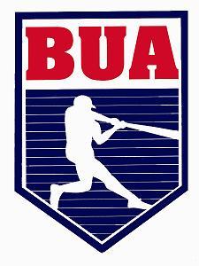 Bronx Umpires Alliance