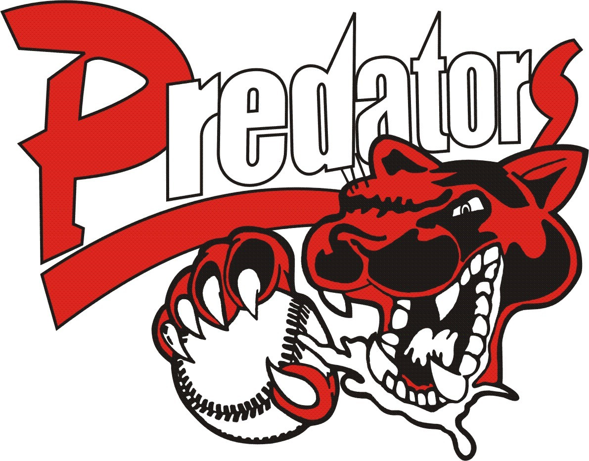 New Tampa Predators 14U