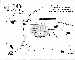 Exter map