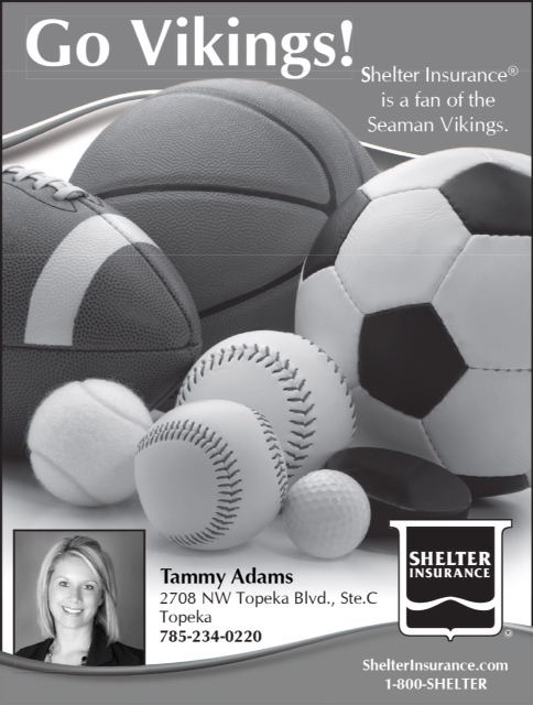 Tammy Adams - Shelter Insurance