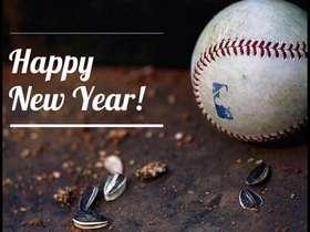 HAPPY NEW YEAR BASEBALL